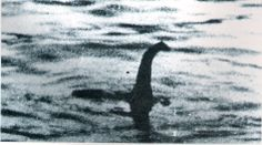 A new video of the Loch Ness Monster has been shot by a Nessie watcher from Ireland.