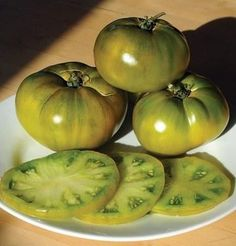 Grow Organic Tomatoes Cherokee Green Beefsteak Tomato - This is our buy doomsday beefsteak tomato seeds. It gives instructions on how to buy seeds from David's Garden Seeds. Growing Tomatoes Indoors, Growing Tomatoes From Seed, Growing Tomatoes In Containers, Growing Plants, Green Tomatoes, Heirloom Tomatoes, Baby Tomatoes, Cherry Tomatoes, Best Tasting Tomatoes