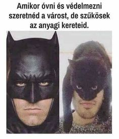Funny Images, Funny Photos, My Images, Batman Cat, Seriously Funny, Sarcasm Humor, Cute Pins, Zootopia, Funny Moments