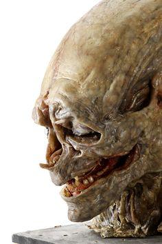 The Animatronic head for the Newborn in Alien Resurrection. Arte Alien, Alien Art, Alien Vs Predator, Alien Resurrection, Giger Alien, Giger Art, Ufo, Alien Character, Scream