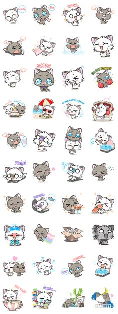 """""""Hoshi & Luna Diary"""" the 2nd series. All cat lovers don't miss. Send it to your friends now!."""