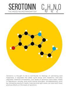 Neurotransmisor Serotonin
