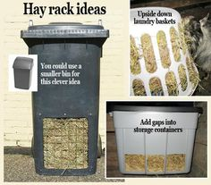 Great ideas for big hay racks. Diy Hay Feeder, Goat Hay Feeder, Bunny Cages, Rabbit Cages, Indoor Rabbit Cage, Outdoor Rabbit Hutch, Rabbit Feeder, Goat Playground, Playground Ideas