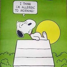 Je pense que je suis allergique au matin.