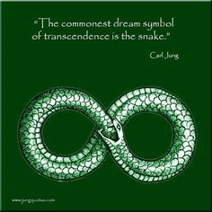Carl Jung Depth Psychology: Dream Symbolism of the Snake