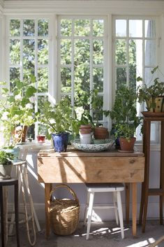 Plot 57 Elsa Billgren The Japanese Art of Growing the Indoor Bonsai Tree Growing the indoor Bonsai T Plywood Furniture, Cosy Home, Interior And Exterior, Interior Design, Up House, Piece A Vivre, Family Kitchen, Home And Living, Decoration