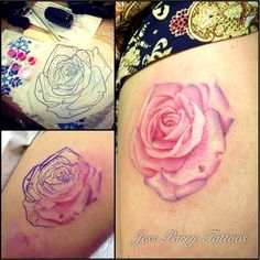 Gallery For > Pale Pink And Rose Tattoo