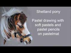 Pastel drawing, shetland pony