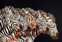 Dare To Be Different by Hayley Goodhead, Buy Latest Box Canvas Artwork with FREE UK Mainland Delivery Zebra Pictures, Print Pictures, Animal Pictures, Black Pen Sketches, Zebra Art, Wow Art, Animals Images, Wild Animals, Watercolor Animals