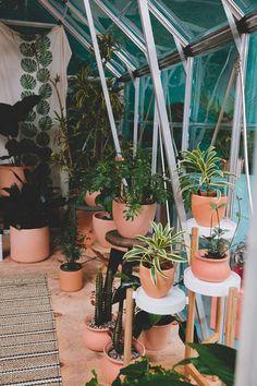 Plant Places: Wyldbnch