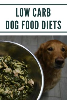Harvey's Paradigm is a new food which can be used as part of a low carb or ketogenic diet for dogs. Learn more about the potential health benefits here! Low Carb Dog Food, Diabetic Dog Food, Low Carb Diet, Home Cooked Dog Food, Make Dog Food, Homemade Dog Food, Ketogenic Diet For Dogs, Dog Diet, Dieta Low