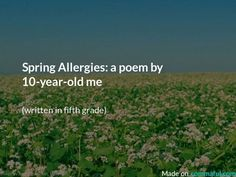Spring Allergies: a poem by me Poetry Lessons, Poetry Quotes, 10 Year Old, 10 Years, Allergies Funny, Spring Poem, Spring Allergies, Famous Poems, Poems Beautiful