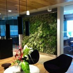 Green Walls WeBloom Amsterdam for your floral decoration for… Vertical Garden Plants, Vertical Gardens, Vertical Farming, Living Green Wall, Living Walls, Feng Shui, Living Roofs, Green Architecture, Interior Garden