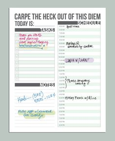 MINI carpe diem planner daily schedule printable by microdesign, $7.00
