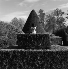 Is it just me or does anyone else find this creepy? _ Blue  _ Photographer Rodney Smith