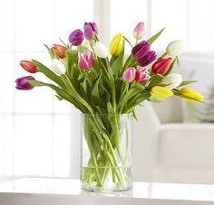 20 bunte Tulpen