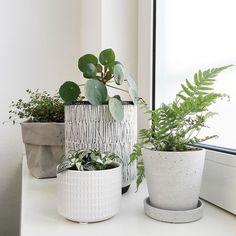 Mooi: Planten groeperen, zwart/grijs/wit en natuurlijk groen; House Doctor bloempot; Hay bloempot en Uashmama plantenzak [styling en fotografie door @vanessabarendregt]