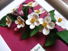 Quilled apple blossom (on a 15x20 cm frame)
