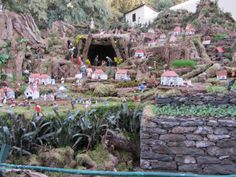 Madeira a model tribute to Christmas