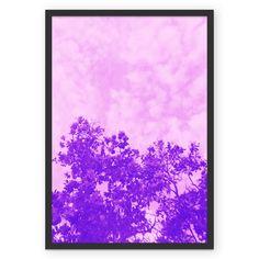 cute poster, sky pink tree árvore natureza céu