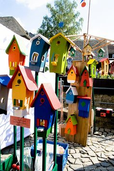 "Birdhouse complex -- i like the idea of having a birdhouse ""community"" like seeing if they'll live in an apartment complex or subsidized housing."