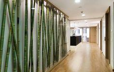 Дизайн стоматологической клиники Edelweiss от klm-Architekten, Берлин, Германия