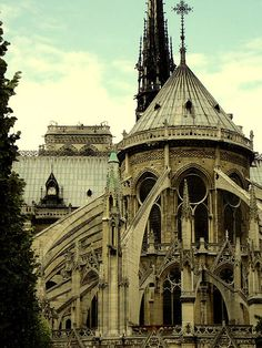 notre dame - is it weird that sometimes cathedral architecture scares me?