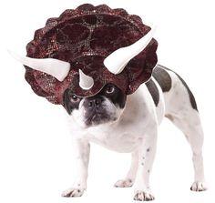 Triceratops-Kostüm für Hunde on http://www.drlima.net