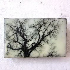 Small Painting - Trees - Black and White - Encaustic Image Transfer Painting - Original Photo - Recycled Wood - Landscape - Mixed Media -