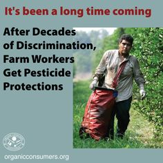 Farm workers will now have sweeping new protections from pesticides under new U.S. Environmental Protection Agency (EPA) rules. #MonsantoMakesUsSick #BanGlyphosate #HumanRights #WorkersRights