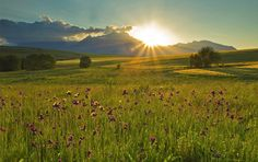 Meadow in Slovakia, view of Tatra Mountains in the distance Tatra Mountains, Travel Information, Countryside, Travel Inspiration, The Good Place, Places To Go, Scenery, Around The Worlds, Country Roads