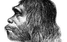 Neandertaler waren die ersten Musiker und Tänzer | OPEN-REPORT - Online-Magazin
