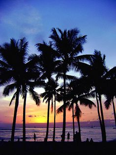 Hawaii Sunset - 2009