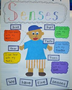 Anchor Chart  - Budding Scientist to learn about Senses. Class Chart and individual charts for students to create on their own.
