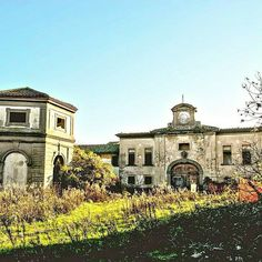 Fattoria di Lorenzo il Magnifico (Lorenzo de' Medici farm) . We  Tuscany #cascineditavola  #igers #igersprato #volgotoscana #volgoitalia #tuscany #toscana #italy #italia #foto #fotografia #picoftheday #photographer #wonderful #art #love #picoftheday #instacool #instalove #instamood #instatravel #instalovers Photo credit: @gamba88