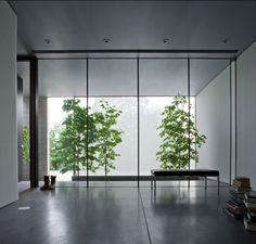 Meadowbrook Residence. Location: Phoenix, AZ, USA; firm: Jay Atherton; year: 2008