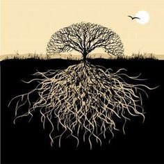 Live like a tree with roots in the past, observation in the present, and descendents/branches that go far into future