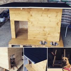12 Meilleures Images Du Tableau Niche A Chien Animaux Dog Crate