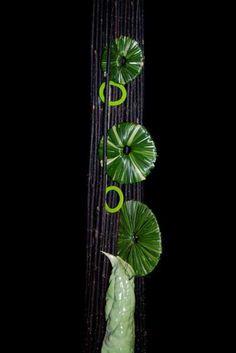Bear grass disc design ...Marie Francoise Deprez