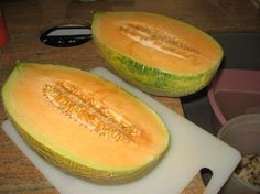 growing melons!