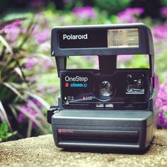 Poloroid Days..brings us back