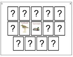 Παιχνίδι μνήμης με εικόνες που απεικονίζουν πουλιά των κυπριακών υγροβιότοπων