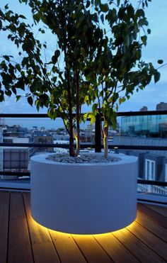 Lit up tree planter