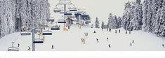 Patříte k jedné, nebo ke druhé skupině? https://www.unionpojistovna.cz/app/aktuality/Lyze-nebo-snowboard-5-duvodu-proc-si-uzit-oboji.html