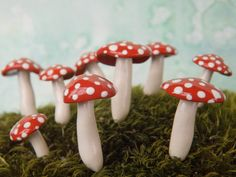 TEN (plus a few freebies) Miniature red and white mushrooms - spotted woodland gnome mini mushrooms for your terrarium or plant - Large size