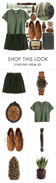 """""""child of countless trees"""" by peach-nymphet ❤ liked on Polyvore featuring Opening Ceremony, WALL, Jeffrey Campbell, Allstate Floral, Crate and Barrel and Paul & Joe"""