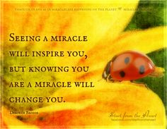 Seeing a miracle will inspire you, but knowing you are a miracle will change you. -  Deborah Brodie  ღ Start from the Heart ღ www.facebook.com/startfromtheheart