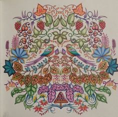 Enchanted forest coloring book booked by Dayna Brown 2015