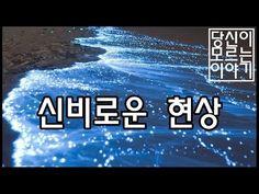 지구의 진귀한 광경들 - YouTube