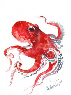 Octopus original watercolor painting 9 X 12 in red by ORIGINALONLY, $38.00